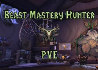 PVE-Beast-Mastery-Hunter-DPS-Guide-WotLK-3.3.5a-1024x640