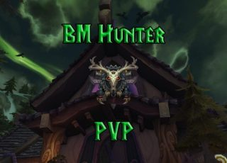 PVP-Beast-Mastery-Hunter-Guide-WotLK-3.3.5a-1024x640