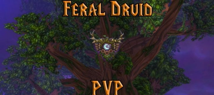 PVP-Feral-Druid-Guide-WotLK-3.3.5a-1024x640