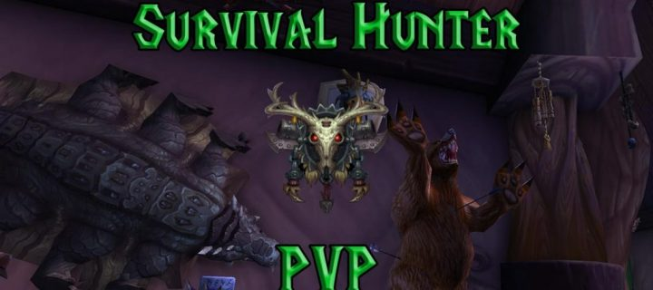 PVP-Survival-Hunter-Guide-WotLK-3.3.5a-1024x640